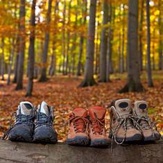 Drei Paar Wanderschuhe im Teutoburger Wald