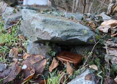 Ist diese braue Box, die unter dem Stein versteckt ist, ein Cache?